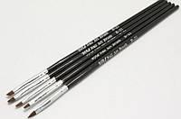 Набор кистей (5 шт. черные) для дизайна и росписи ногтей