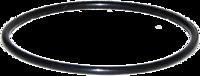 """Кольцо уплотнительное для фильтров 10"""" РОСА(черное)"""