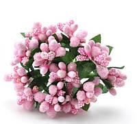 Сложные тычинки розовые