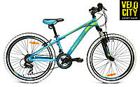 "Mascotte Phoenix 24"" велосипед 2016"