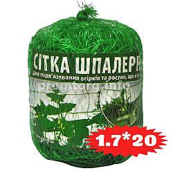 Сетка для огурцов (шпалерная) 1.7 х 20м (34м2)