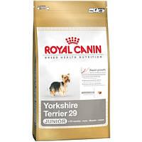 Сухой корм для щенков Royal Canin Yorkshire Terrier 29 Junior  0,5 кг