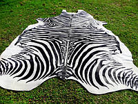 Шкура коровы с покраской под зебру, крашенные коровьи шкуры под зебру