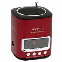 Портативная MP3 колонка WS 259 Спикер USB FM, музыкальная колонка, fm радио колонка usb