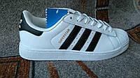 Подростковые женские кроссовки adidas superstar белые с черным качество ААА+