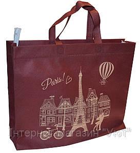 Эко-сумка из натурального материала с Парижем, синий/бордо