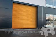 Секционные промышленные автоматические ворота Ритерна (Ryterna), Киев