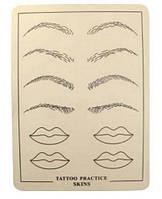 Тренировочная кожа для обучения тату и татуажу. С эскизом губ и бровей. 15 на 20 см.