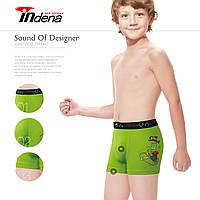 Детские боксеры ТМ INDENA Арт.45501