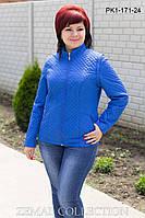 Демисезонная куртка PK1-171 ( р.44-54), фото 1