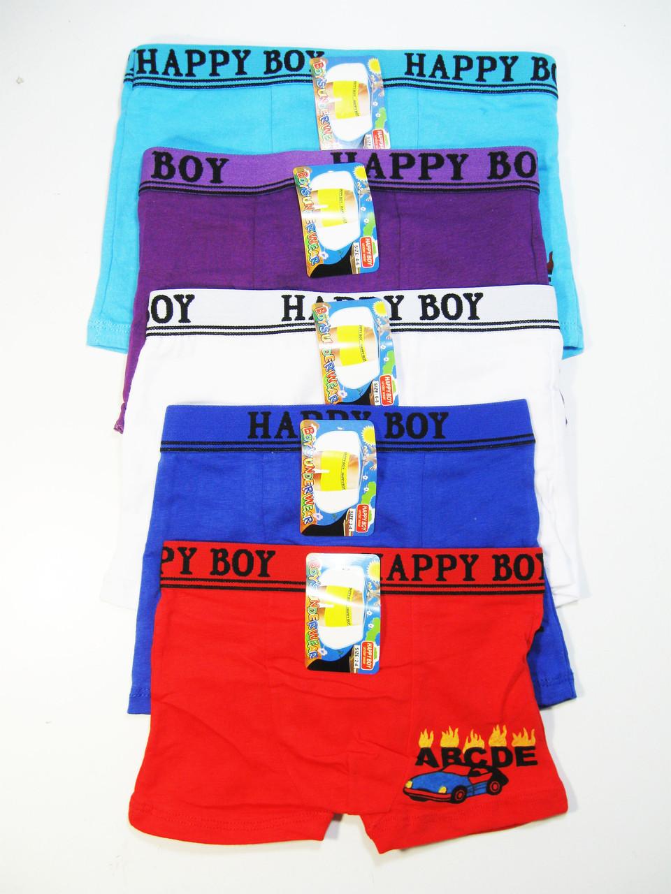 Трусы-боксеры для мальчиков, Happy Boy, размеры 2/4.4/6,7/9,10/12 лет, арт. 002