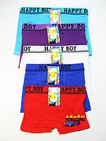 Трусы-боксеры для мальчиков, Happy Boy, размеры 2/4.4/6,7/9,10/12 лет, арт. 002, фото 1