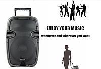 Беспроводной Bluetooth-динамик 15 AK, колонка 15''/USB/SD/FM/DC12V/DVD input/With Rechargeable battery 4.5A