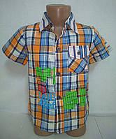 Рубашка в клетку летняя для мальчика р. 1-4 года