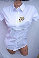 Женская рубашка коттон Подросток школа оптом