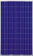 Солнечная батарея Photon Solar CS6P20-245