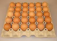 Яйцо 2 категории