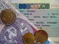 """Пакет """"Рабочая виза"""" 180/360"""