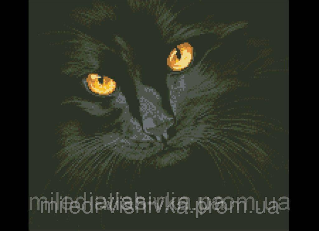"""Схема для вышивки бисером """"Кошачья магия"""""""