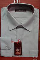 Детская  рубашка в полоску BENDU (размеры 29,32,33,35)