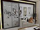 Шкаф купе с пескоструйным рисунком (100х45х210)