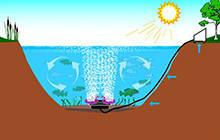 Обогащение кислородом воды в пруду