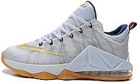 Баскетбольные кроссовки Nike Lebron 12 Low Usa Midnight University, найк леброн