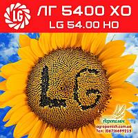 Семена подсолнечника ЛГ 5400 ХО (LG 5400 HO)