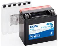 Аккумулятор для мотоцикла гелевый EXIDE YTX14L-BS  12Ah 150x87x145