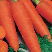 Семена моркови Вита-лонга, оптом, длительного хранения.