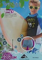 Боксеры на мальчика «Wenzhi» 6-14 лет