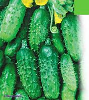 Семена огрца Титус F1