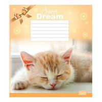 """Тетрадь 12 листов (клетка), """"Сладкие сны"""" ТА5.1211.2154к"""