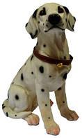 Статуэтка собаки Долматинца 180х330х230