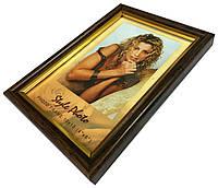 Рамки для фотографий (10 х 15 см) коричневые с золотой окантовкой