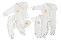Комплект для новорожденного Винни Пух в подарочной упаковке НБ38  68
