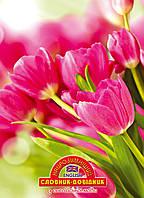 """Словарь для записи иностранных слов, твердая обложка """"Тюльпани"""" Найрозумніший"""