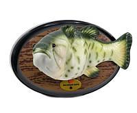 """Поющая рыба """"Веселый карп"""""""