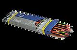 Карандаш графитовый NEON LINE HB с ластиком трехгранный Buromax, фото 2