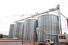 Металлические силоса с плоским дном для хранения зерна, фото 2
