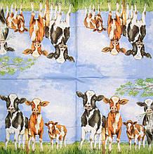 Декупажні серветки корови на лузі 913