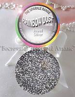 Пищевые Блёстки Rainbow Dust - Jewel Silver - Сияющее Серебро, фото 1