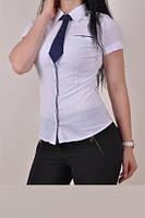Рубашка женская стрейчевая