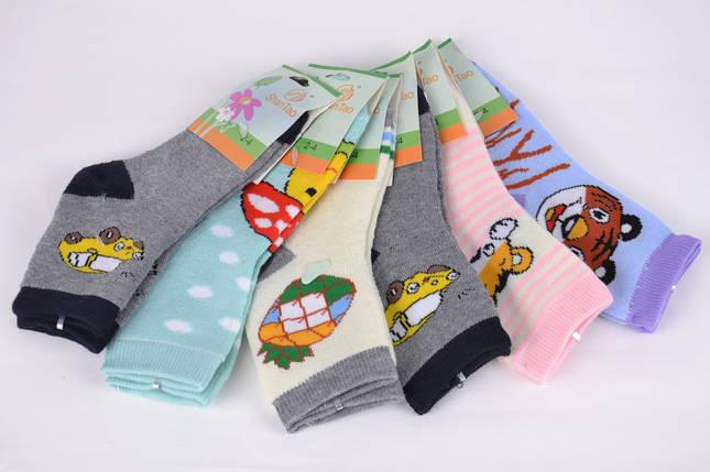 Носки детские махровые на девочку р.2-4 года (CD001/3) | 12 пар, фото 2