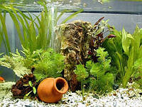 Декор для аквариумов