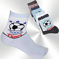 Носочки детские для мальчиков Ceburaska ND25200034