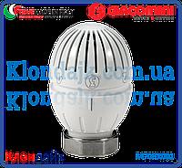 Giacomini Жидкостная термостатическая головка с резьбовым соединением М30х1,5