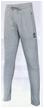 Спортивные брюки BestTeam TP-11517 (серые)