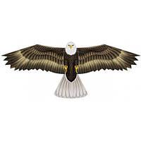 WindNSun Воздушный змей WindNSun Орел, 71 см