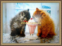 Картина Котята и мороженное репродукция